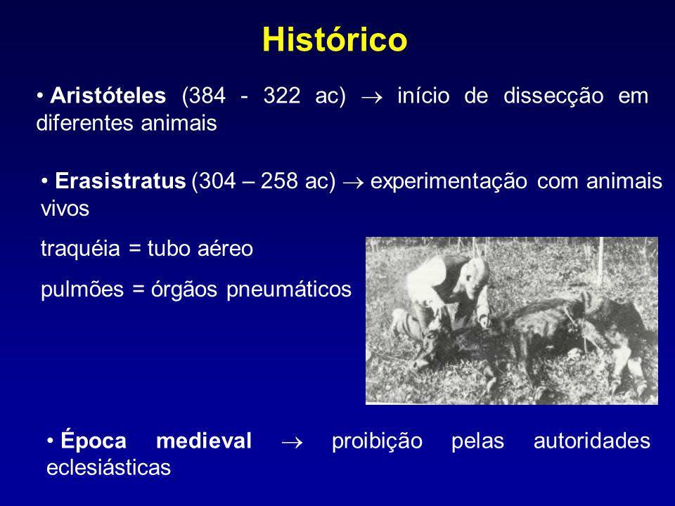 Histórico Aristóteles (384 - 322 ac) início de dissecção em diferentes animais Época medieval proibição pelas autoridades eclesiásticas Erasistratus (