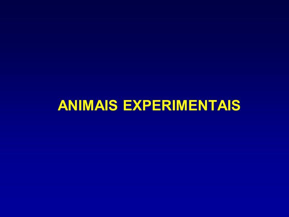ANIMAIS EXPERIMENTAIS
