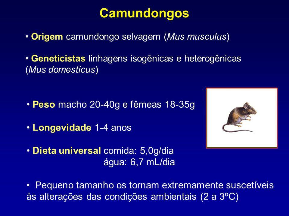 Peso macho 20-40g e fêmeas 18-35g Longevidade 1-4 anos Dieta universal comida: 5,0g/dia água: 6,7 mL/dia Pequeno tamanho os tornam extremamente suscet