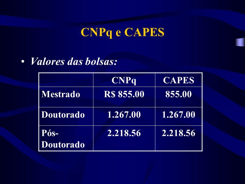 CNPq e CAPES Valores das bolsas: CNPqCAPES MestradoR$ 855.00855.00 Doutorado1.267.00 Pós- Doutorado 2.218.56
