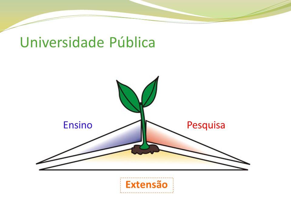 Universidade Pública EnsinoPesquisa Extensão