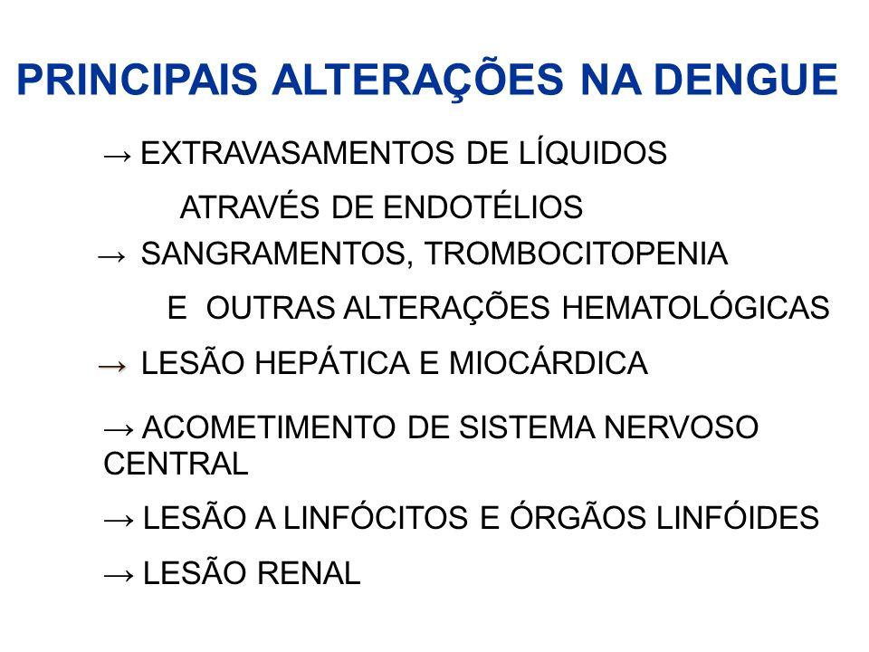 EXTRAVASAMENTOS DE LÍQUIDOS ATRAVÉS DE ENDOTÉLIOS SANGRAMENTOS, TROMBOCITOPENIA E OUTRAS ALTERAÇÕES HEMATOLÓGICAS LESÃO HEPÁTICA E MIOCÁRDICA ACOMETIM