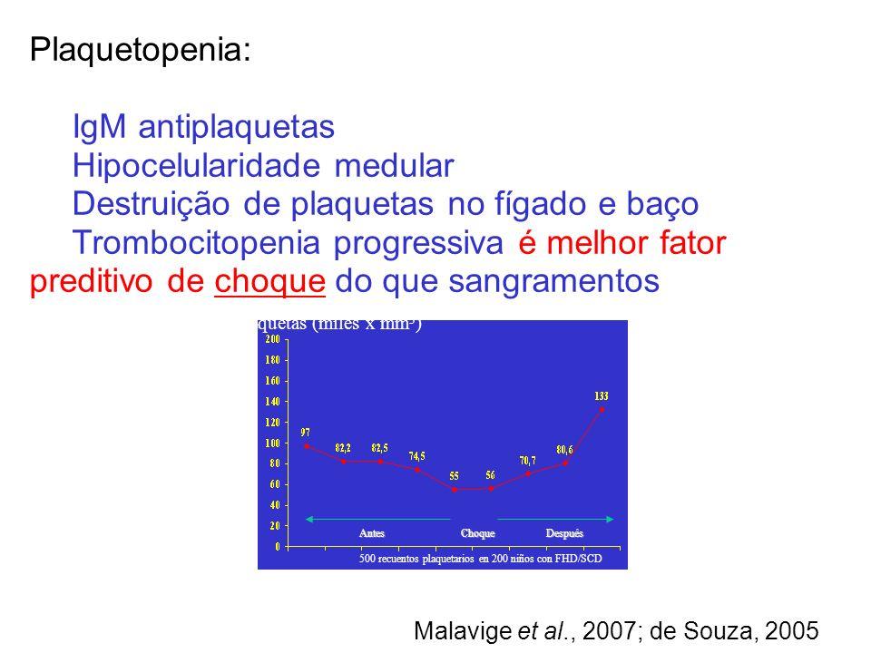 Plaquetopenia: IgM antiplaquetas Hipocelularidade medular Destruição de plaquetas no fígado e baço Trombocitopenia progressiva é melhor fator preditiv