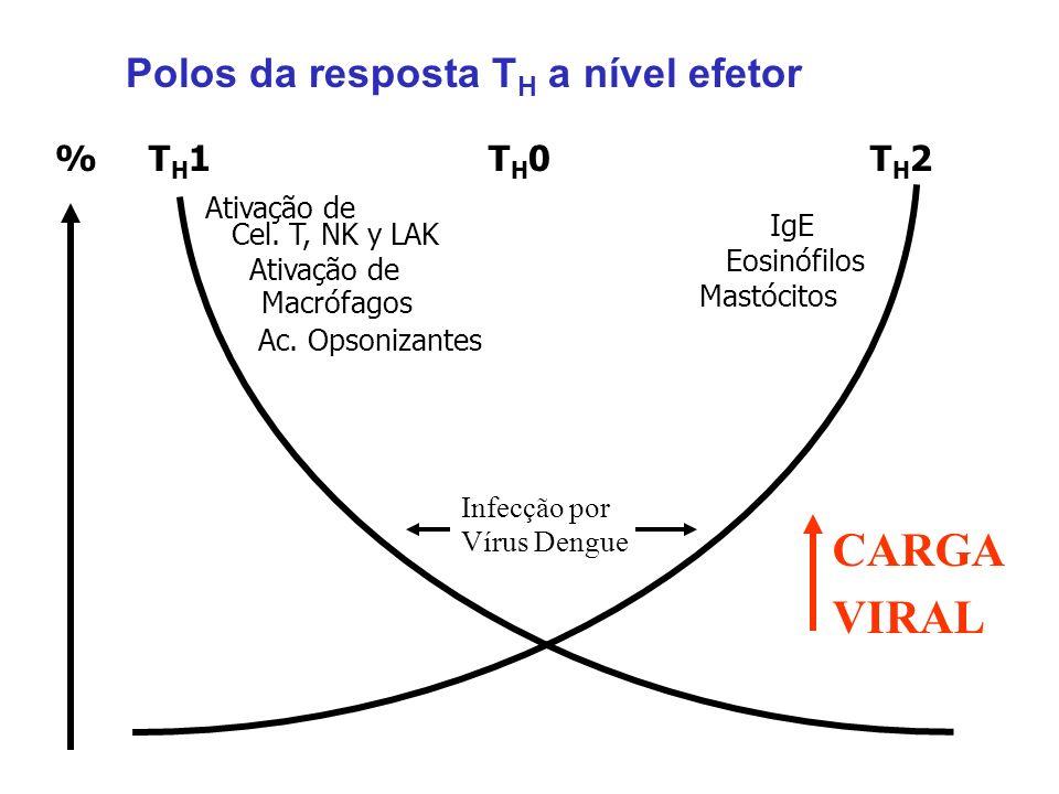 % T H 1 T H 0 T H 2 Polos da resposta T H a nível efetor Ativação de Macrófagos Ac. Opsonizantes Cel. T, NK y LAK Ativação de IgE Eosinófilos Mastócit