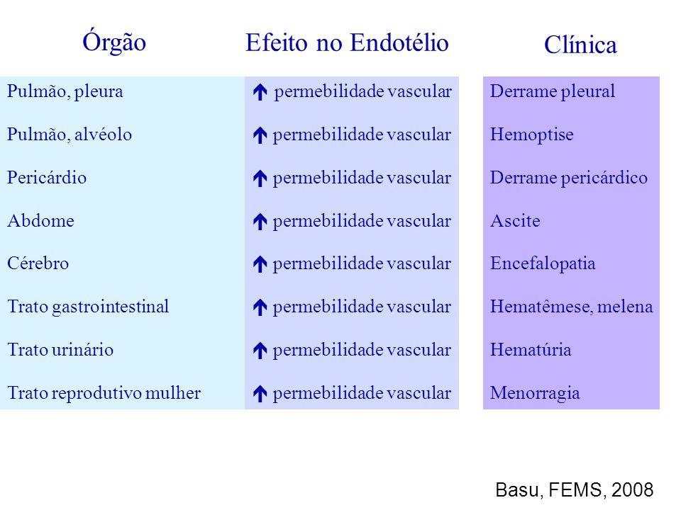 Pulmão, pleura Pulmão, alvéolo Pericárdio Abdome Cérebro Trato gastrointestinal Trato urinário Trato reprodutivo mulher permebilidade vascular Derrame
