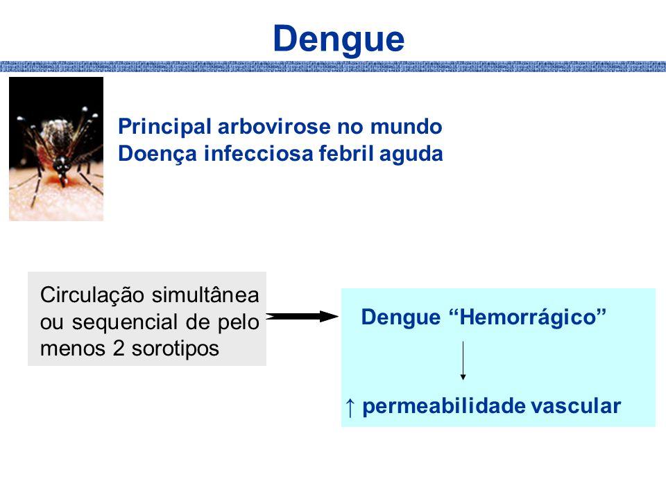 Dengue Principal arbovirose no mundo Doença infecciosa febril aguda Circulação simultânea ou sequencial de pelo menos 2 sorotipos Dengue Hemorrágico p