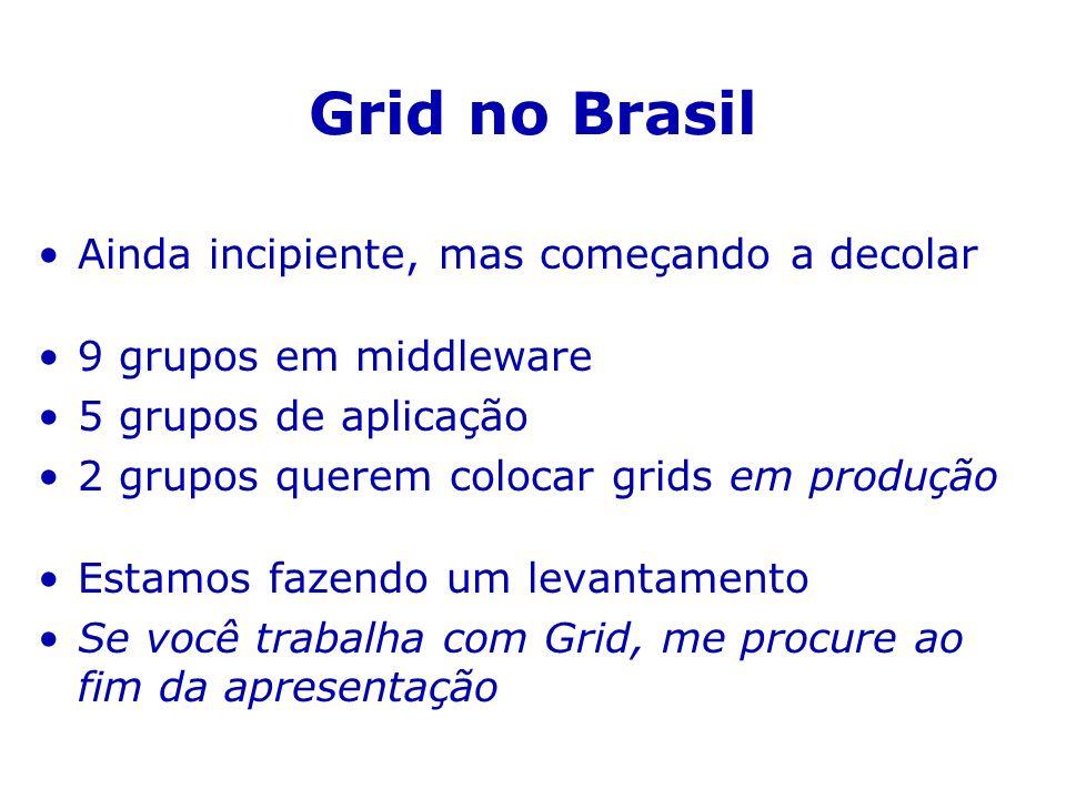 Grid no Brasil Ainda incipiente, mas começando a decolar 9 grupos em middleware 5 grupos de aplicação 2 grupos querem colocar grids em produção Estamos fazendo um levantamento Se você trabalha com Grid, me procure ao fim da apresentação