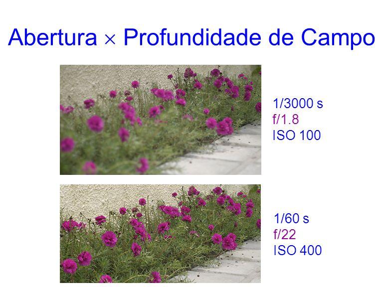 Abertura Profundidade de Campo 1/3000 s f/1.8 ISO 100 1/60 s f/22 ISO 400