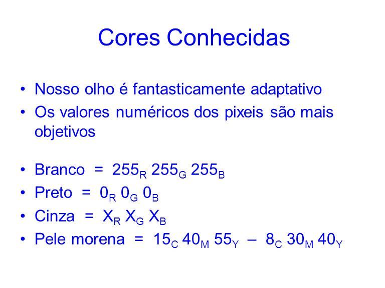 Cores Conhecidas Nosso olho é fantasticamente adaptativo Os valores numéricos dos pixeis são mais objetivos Branco = 255 R 255 G 255 B Preto = 0 R 0 G 0 B Cinza = X R X G X B Pele morena = 15 C 40 M 55 Y – 8 C 30 M 40 Y