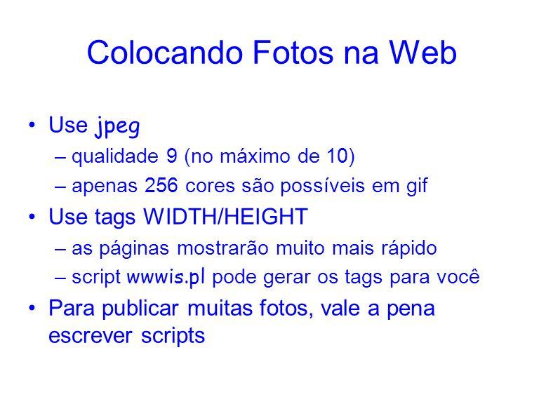 Colocando Fotos na Web Use jpeg –qualidade 9 (no máximo de 10) –apenas 256 cores são possíveis em gif Use tags WIDTH/HEIGHT –as páginas mostrarão muito mais rápido –script wwwis.pl pode gerar os tags para você Para publicar muitas fotos, vale a pena escrever scripts