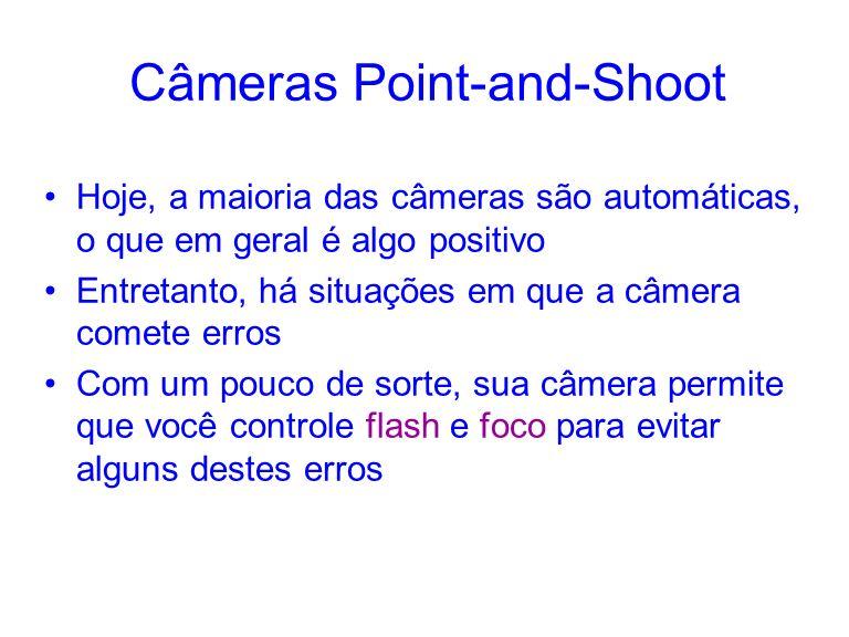 Câmeras Point-and-Shoot Hoje, a maioria das câmeras são automáticas, o que em geral é algo positivo Entretanto, há situações em que a câmera comete erros Com um pouco de sorte, sua câmera permite que você controle flash e foco para evitar alguns destes erros