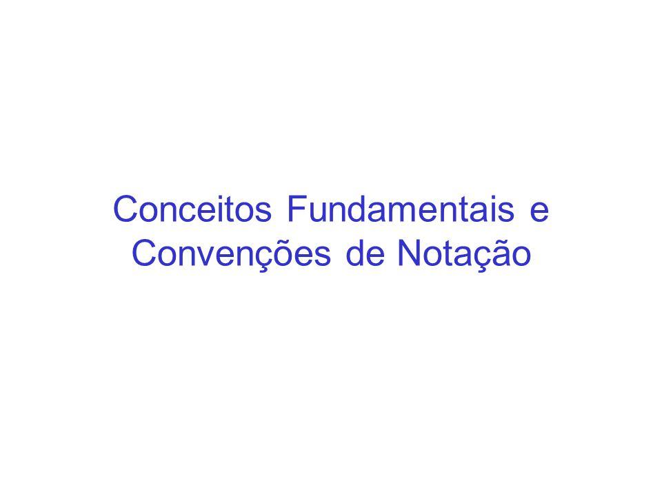 Conceitos Fundamentais e Convenções de Notação