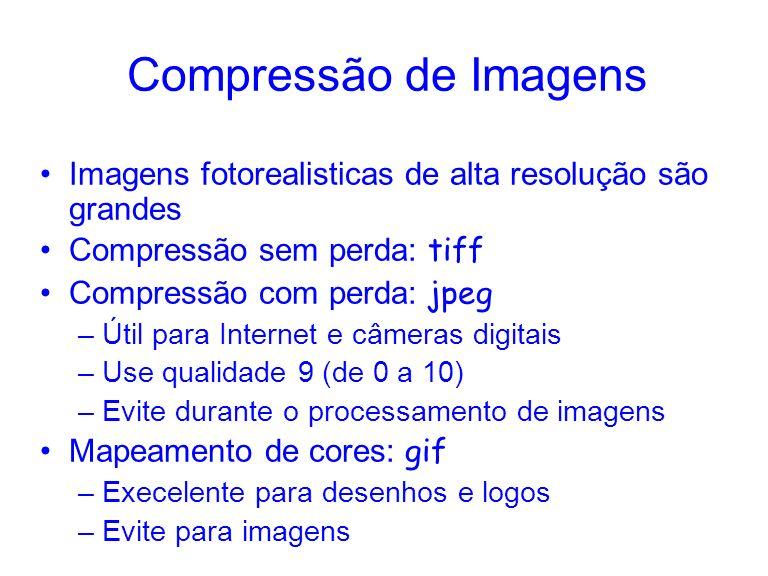 Compressão de Imagens Imagens fotorealisticas de alta resolução são grandes Compressão sem perda: tiff Compressão com perda: jpeg –Útil para Internet