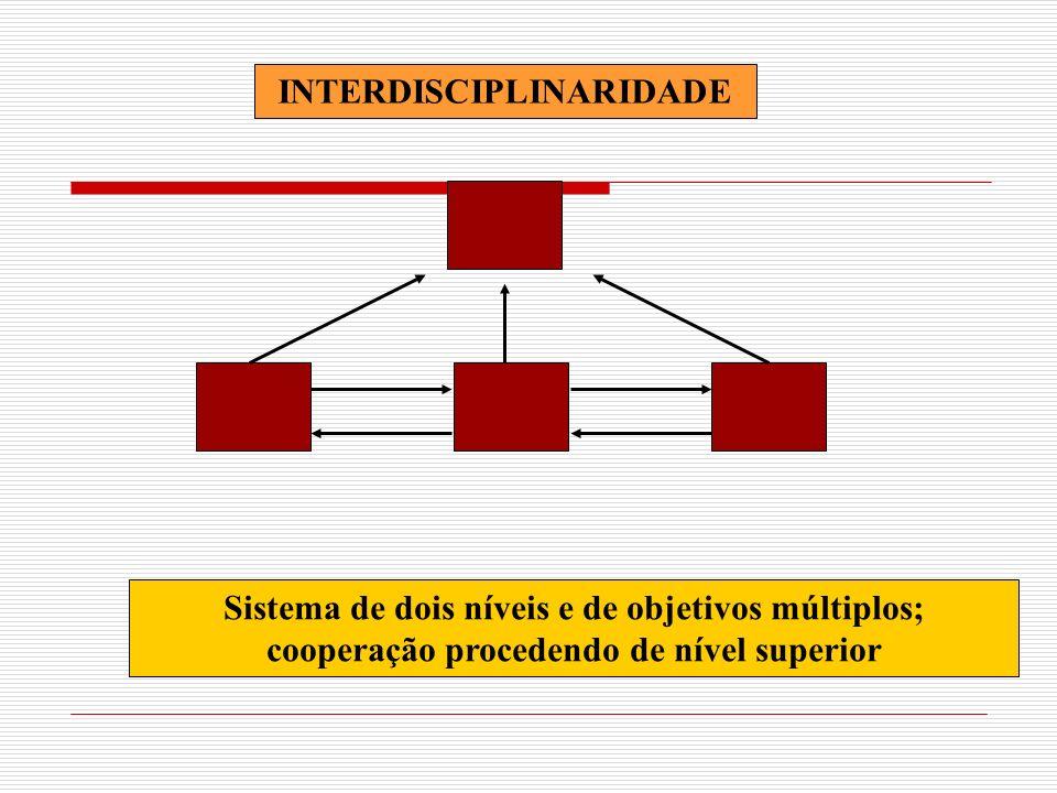 INTERDISCIPLINARIDADE Sistema de dois níveis e de objetivos múltiplos; cooperação procedendo de nível superior