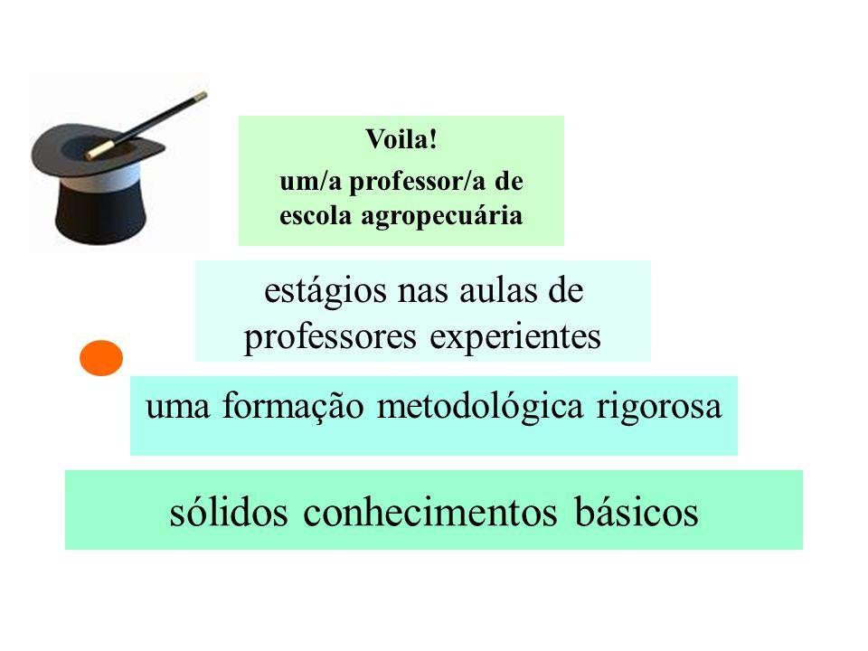 sólidos conhecimentos básicos uma formação metodológica rigorosa estágios nas aulas de professores experientes