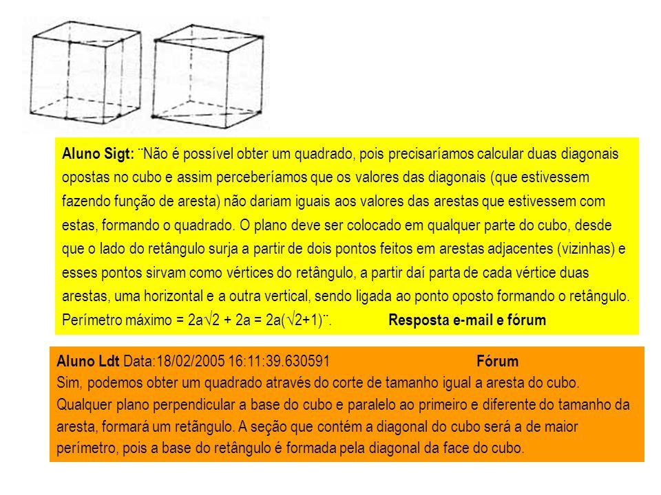 Aluno Sigt: ¨Não é possível obter um quadrado, pois precisaríamos calcular duas diagonais opostas no cubo e assim perceberíamos que os valores das dia