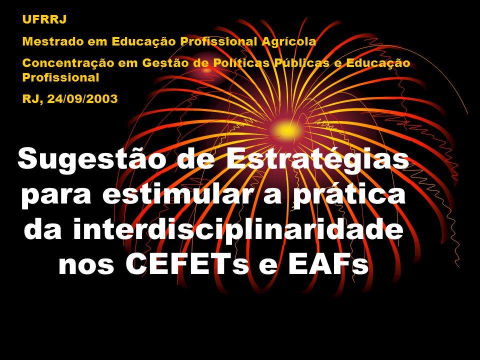 Sugestão de Estratégias para estimular a prática da interdisciplinaridade nos CEFETs e EAFs UFRRJ Mestrado em Educação Profissional Agrícola Concentra