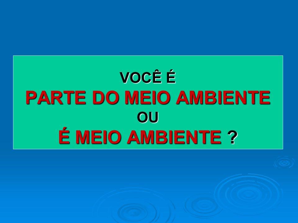 APROXIMADAMENTE 95% DA ESCOLAS BRASILEIRAS SE RECONHECEM FAZENDO ALGUMA ATIVIDADE DE EDUCAÇÃO AMBIENTAL ! (INEP, 2004) PARADOXO !! + EDUCAÇÃO AMBIENTA