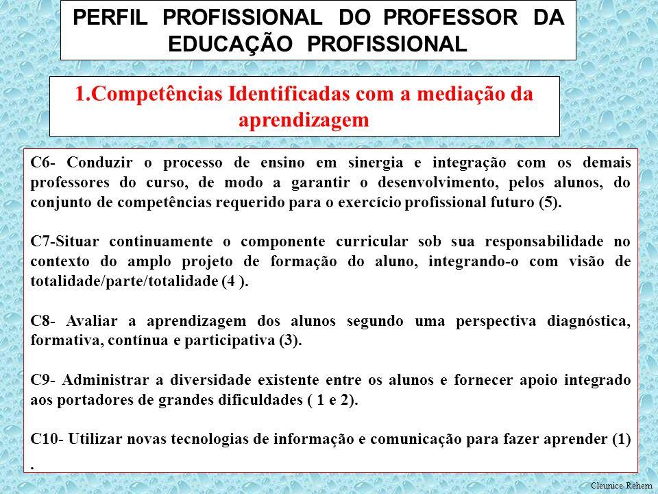 PERFIL PROFISSIONAL DO PROFESSOR DA EDUCAÇÃO PROFISSIONAL C6- Conduzir o processo de ensino em sinergia e integração com os demais professores do curs