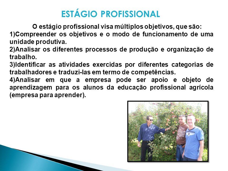 ESTÁGIO PROFISSIONAL O estágio profissional visa múltiplos objetivos, que são: 1)Compreender os objetivos e o modo de funcionamento de uma unidade pro
