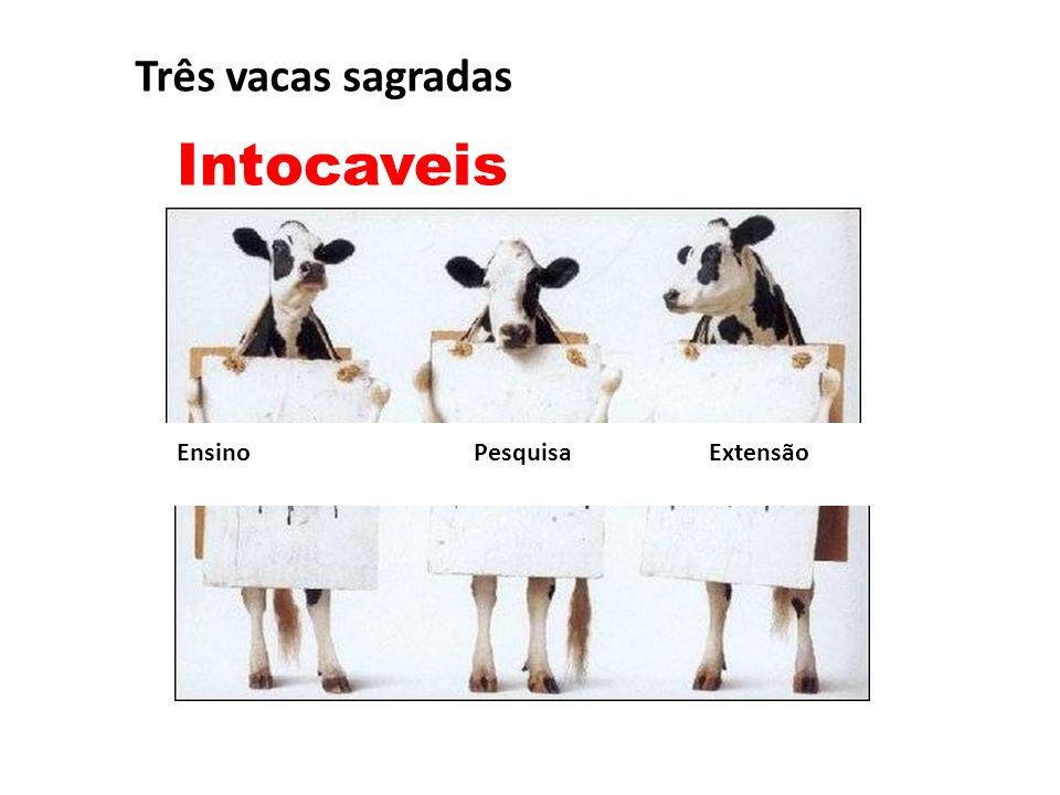 Ensino Pesquisa Extensão Três vacas sagradas Intocaveis