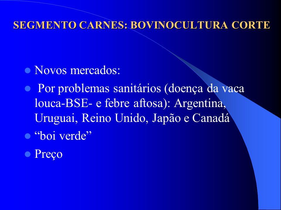 SEGMENTO CARNES: BOVINOCULTURA CORTE Novos mercados: Por problemas sanitários (doença da vaca louca-BSE- e febre aftosa): Argentina, Uruguai, Reino Un