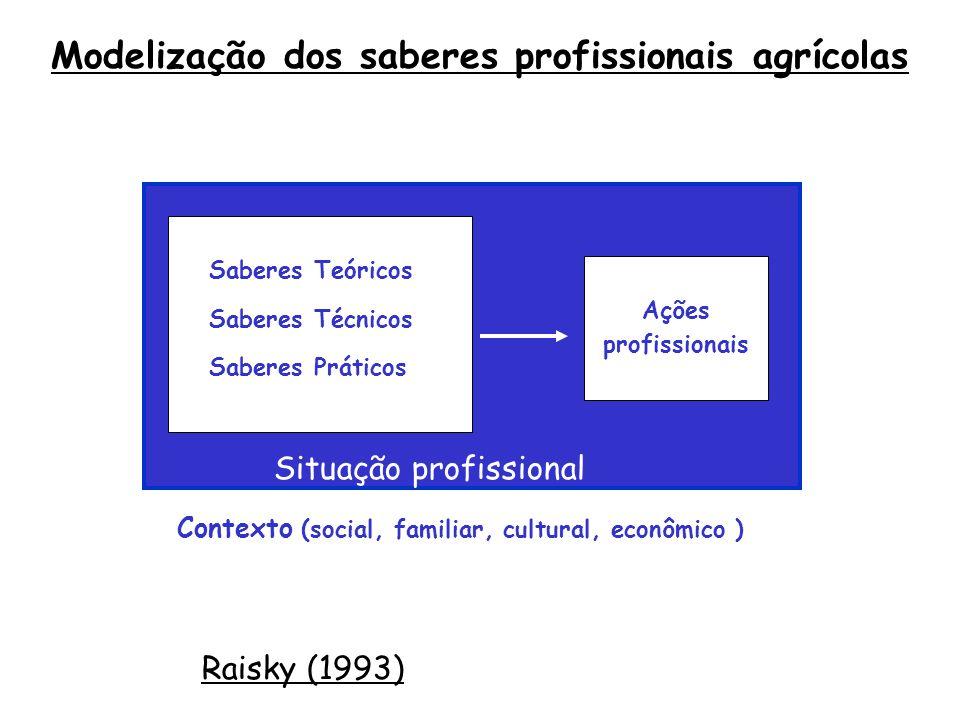 Daprès Raisky (1993) Modelização dos saberes profissionais agrícolas Contexto (social, familiar, cultural, econômico ) Situação profissional Ações profissionais Saberes Teóricos Saberes Técnicos Saberes Práticos