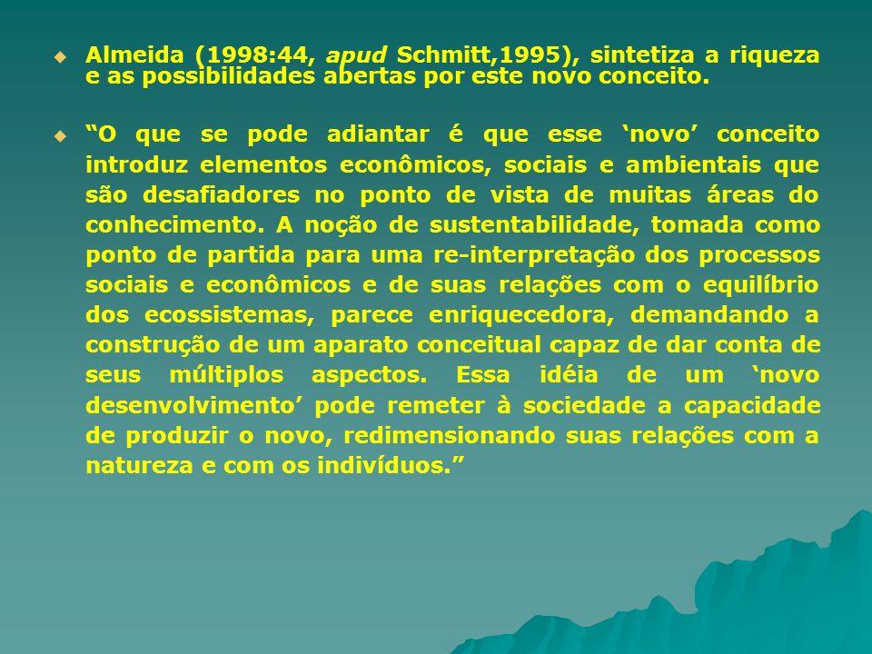Almeida (1998:44, apud Schmitt,1995), sintetiza a riqueza e as possibilidades abertas por este novo conceito. O que se pode adiantar é que esse novo c
