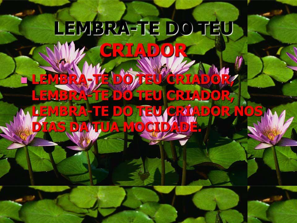 LEMBRA-TE DO TEU CRIADOR LEMBRA-TE DO TEU CRIADOR, LEMBRA-TE DO TEU CRIADOR, LEMBRA-TE DO TEU CRIADOR NOS DIAS DA TUA MOCIDADE. LEMBRA-TE DO TEU CRIAD