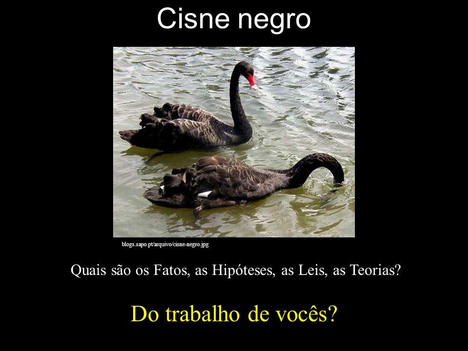 Cisne negro Do trabalho de vocês? blogs.sapo.pt/arquivo/cisne-negro.jpg Quais são os Fatos, as Hipóteses, as Leis, as Teorias?