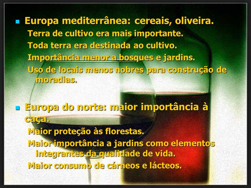 Europa mediterrânea: cereais, oliveira. Europa mediterrânea: cereais, oliveira. Terra de cultivo era mais importante. Toda terra era destinada ao cult