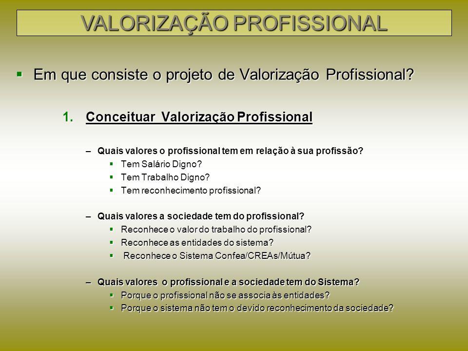 2 – Desenvolver ações voltadas para a Valorização Profissional VALORIZAÇÃO PROFISSIONAL AÇÕES PARA VALORIZAÇÃO PROFISSIONAL PROFISSIONAL SOCIEDADESISTEMA EMPREGADO (smp/ emprego) PESSOA JURÍDICA (honorários) EMPRESÁRIO (Lucro) Sustentabilidade das Entidades Excelência Gerencial Integração institucional Comunicação e Marketing Inserção Política Lei 11.888/08