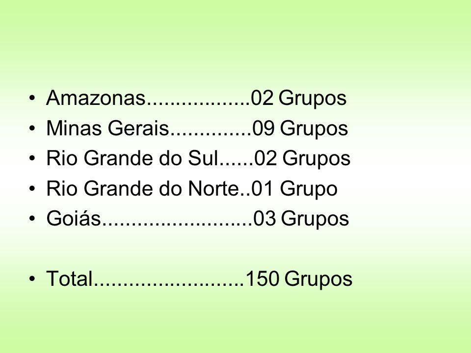 Amazonas..................02 Grupos Minas Gerais..............09 Grupos Rio Grande do Sul......02 Grupos Rio Grande do Norte..01 Grupo Goiás..........