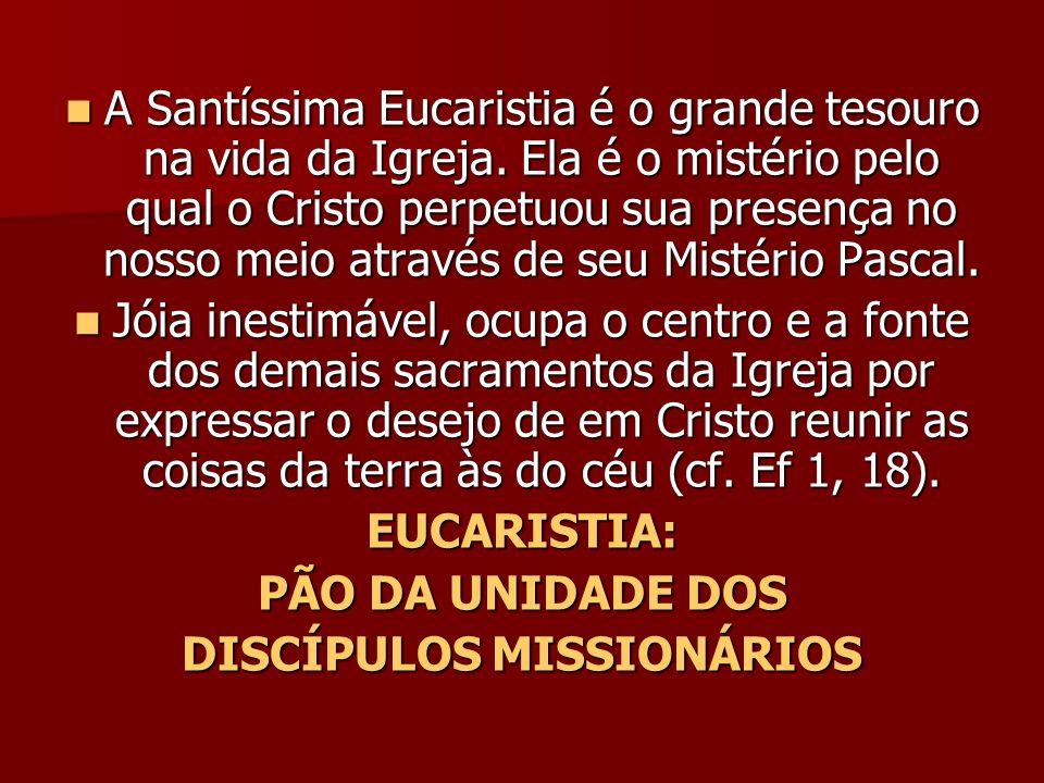 A Santíssima Eucaristia é o grande tesouro na vida da Igreja. Ela é o mistério pelo qual o Cristo perpetuou sua presença no nosso meio através de seu