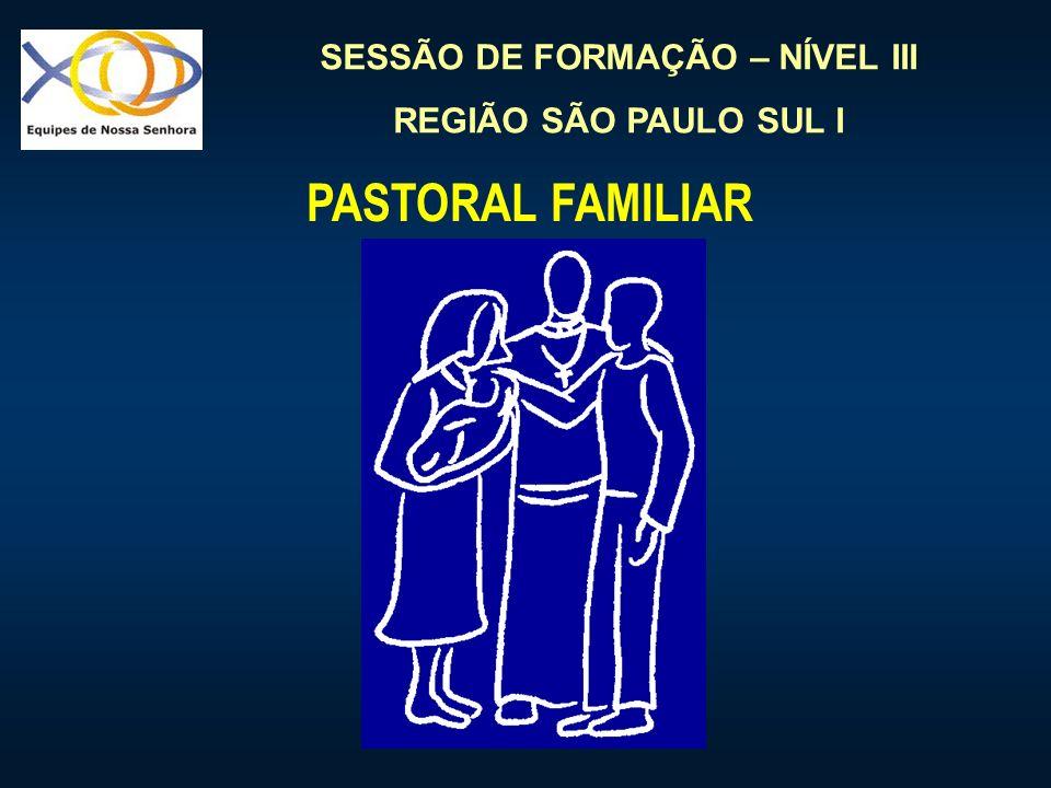 SESSÃO DE FORMAÇÃO – NÍVEL III REGIÃO SÃO PAULO SUL I PASTORAL FAMILIAR