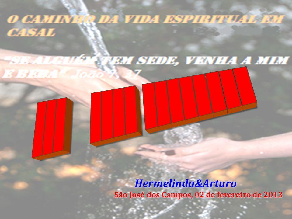 Hermelinda&Arturo Hermelinda&Arturo São José dos Campos, 02 de fevereiro de 2013