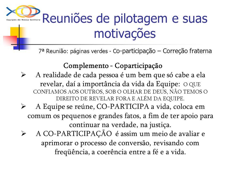 Reuniões de pilotagem e suas motivações 7ª Reunião: páginas verdes - C o-participação – Correção fraterna Complemento - Coparticipação A realidade de