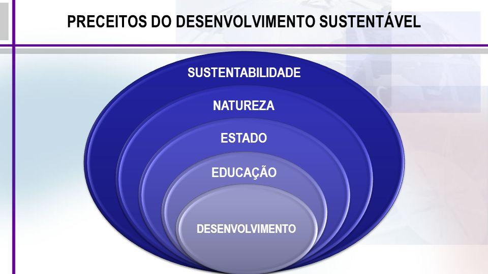 PRECEITOS DO DESENVOLVIMENTO SUSTENTÁVEL SUSTENTABILIDADE NATUREZA ESTADO EDUCAÇÃO DESENVOLVIMENTO