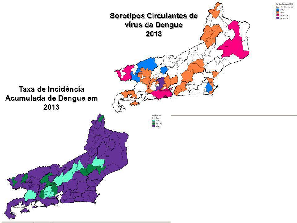 Taxa de Incidência Acumulada de Dengue em 2013 Sorotipos Circulantes de vírus da Dengue 2013