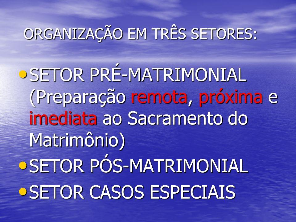 ORGANIZAÇÃO EM TRÊS SETORES: ORGANIZAÇÃO EM TRÊS SETORES: SETOR PRÉ-MATRIMONIAL (Preparação remota, próxima e imediata ao Sacramento do Matrimônio) SE