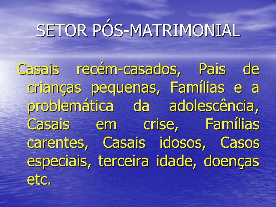 SETOR PÓS-MATRIMONIAL Casais recém-casados, Pais de crianças pequenas, Famílias e a problemática da adolescência, Casais em crise, Famílias carentes,