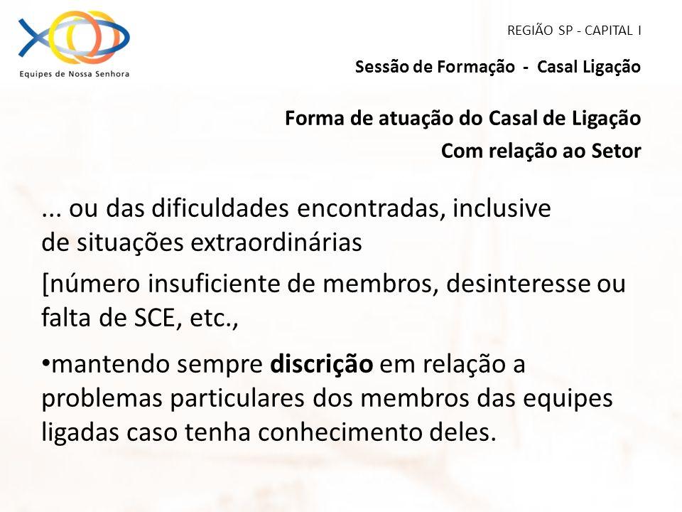 REGIÃO SP - CAPITAL I Sessão de Formação - Casal Ligação Forma de atuação do Casal de Ligação Com relação ao Setor... ou das dificuldades encontradas,