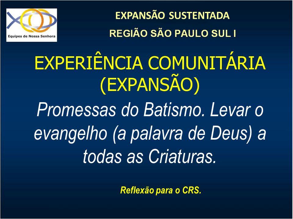 EXPANSÃO SUSTENTADA EXPERIÊNCIA COMUNITÁRIA (EXPANSÃO) Promessas do Batismo. Levar o evangelho (a palavra de Deus) a todas as Criaturas. Reflexão para