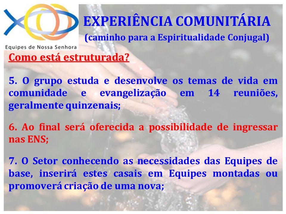 Como está estruturada? 5. O grupo estuda e desenvolve os temas de vida em comunidade e evangelização em 14 reuniões, geralmente quinzenais; 6. Ao fina