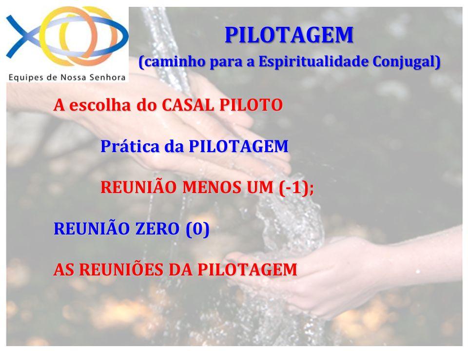 A escolha do CASAL PILOTO Prática da PILOTAGEM Prática da PILOTAGEM REUNIÃO MENOS UM (-1); REUNIÃO MENOS UM (-1); REUNIÃO ZERO (0) AS REUNIÕES DA PILO