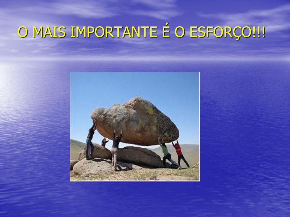 O MAIS IMPORTANTE É O ESFORÇO!!!