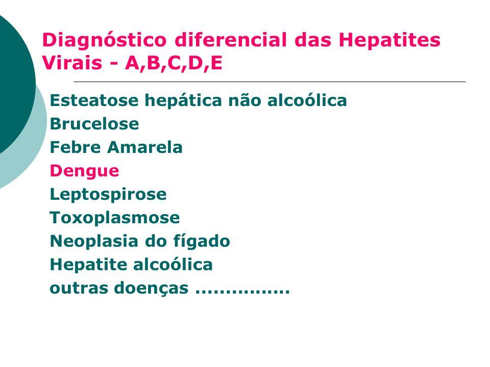 Diagnóstico diferencial das Hepatites Virais - A,B,C,D,E Esteatose hepática não alcoólica Brucelose Febre Amarela Dengue Leptospirose Toxoplasmose Neo