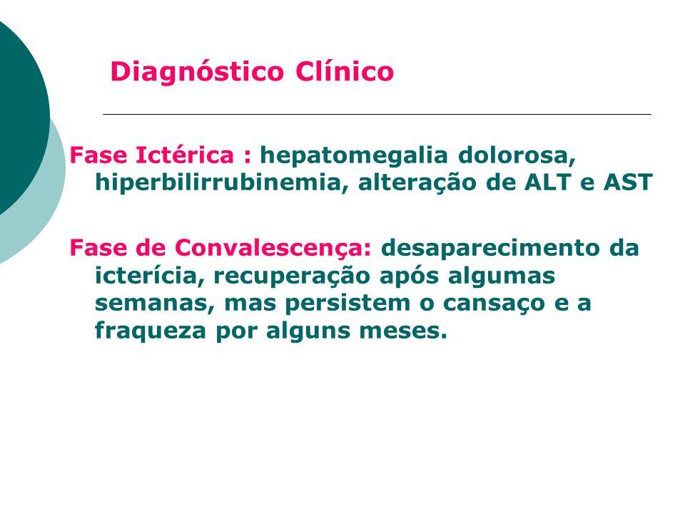 Diagnóstico Clínico Fase Ictérica : hepatomegalia dolorosa, hiperbilirrubinemia, alteração de ALT e AST Fase de Convalescença: desaparecimento da icte