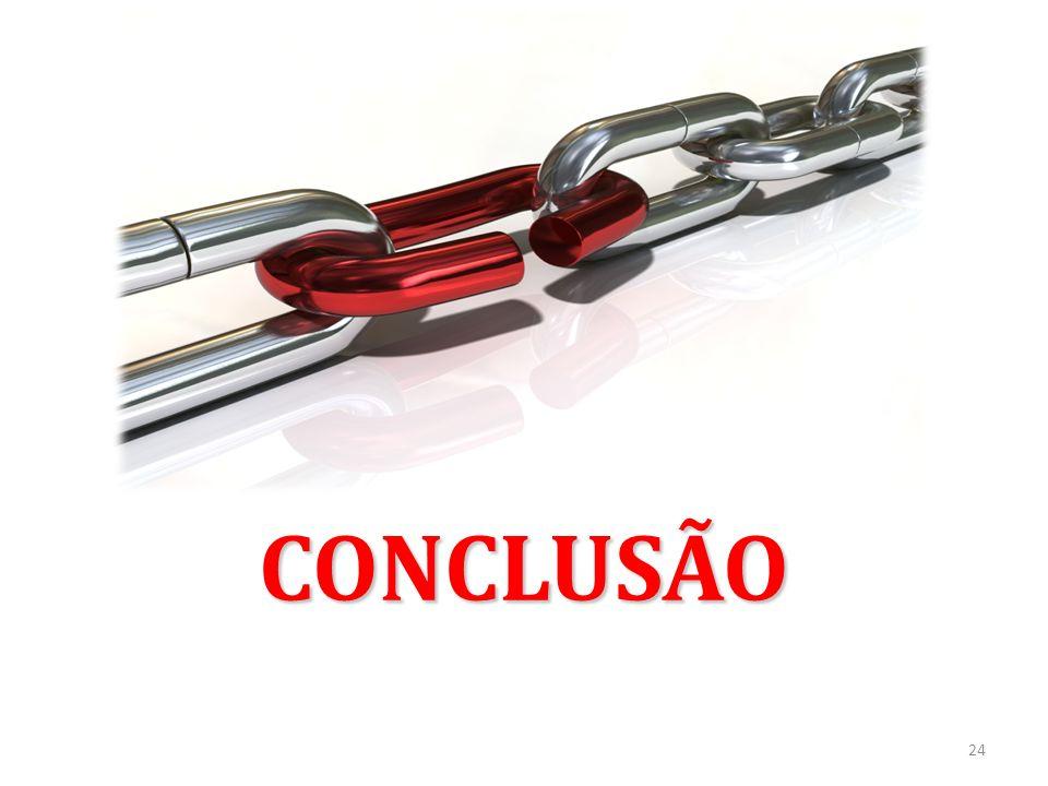 CONCLUSÃO 24