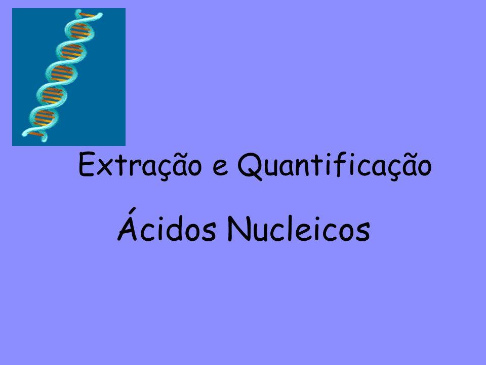 Ácidos Nucleicos Extração e Quantificação